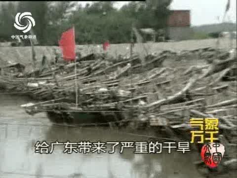 9615湛江台风纪事