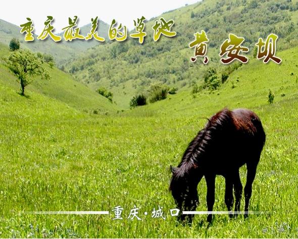 黄安坝高山牧场度假区