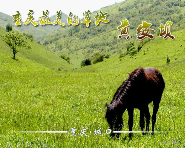 城口:黄安坝高山牧场度假区