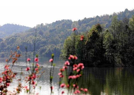 铜梁:大美龙城 四季见花处处皆景