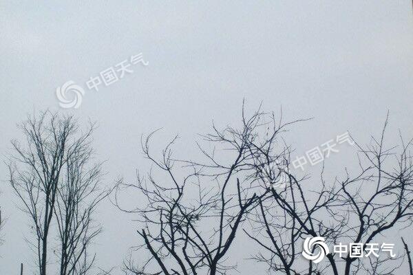 冷!后天重庆主城最高气温将跌至7℃