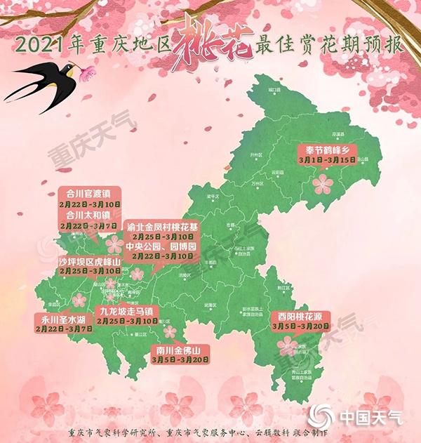 重庆明后全市迎降雨 桃花将进入最佳观赏期