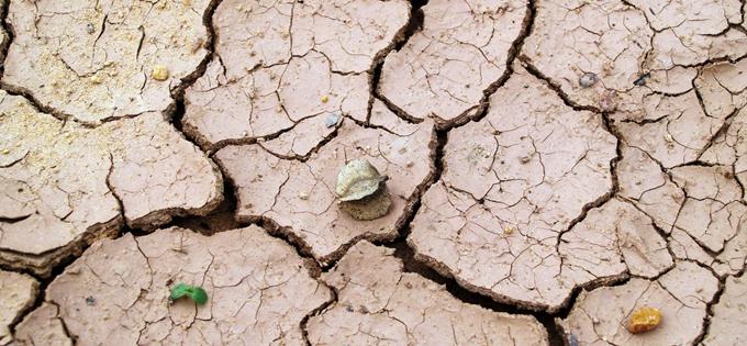科罗拉多河人工湖水位持续下降