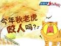 数据帝:今年的秋老虎咬人吗?