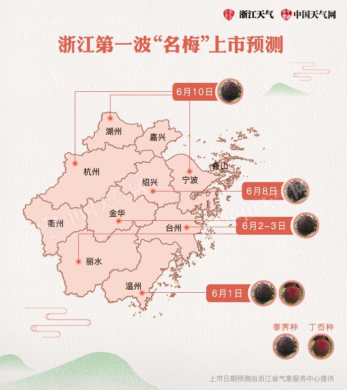 杨梅-上市预测.jpg