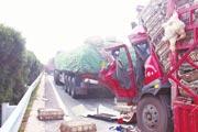 河南:连霍高速因突发团雾15车相撞 1死12伤