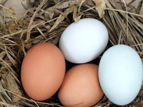 吃鸡蛋最常犯的6个错