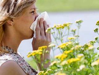 警惕季节性过敏性鼻炎
