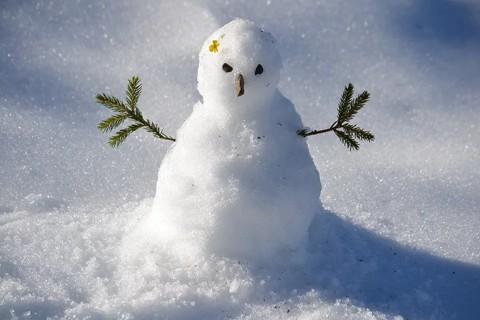 雪下成啥样才能愉快堆雪人?