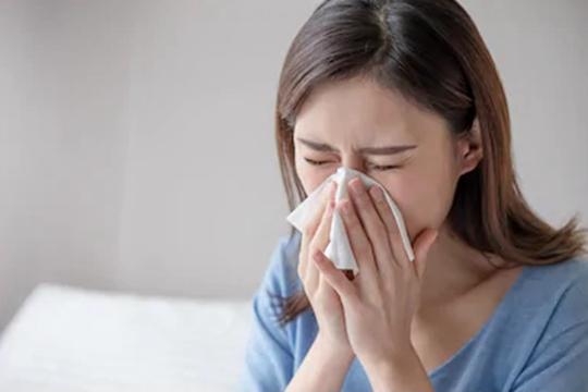 鼻塞打喷嚏 如何区分感冒还是花粉过敏?