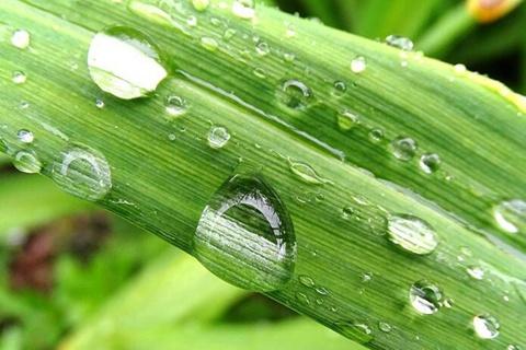 建議收藏!超實用的梅雨季節生活小妙招