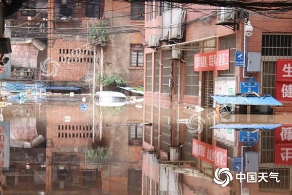 速看!持续强降雨致洪水来袭 该如何避险?
