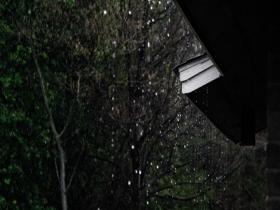我国多地开启梅雨季 这些除湿小妙招你需要知道
