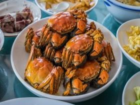 吃螃蟹登高赏秋色 寒露习俗知多少?