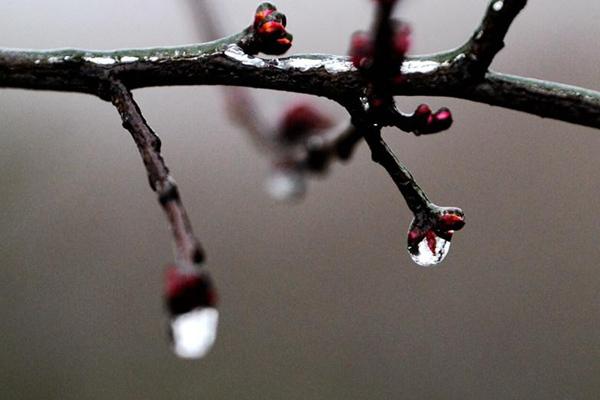 华北等地迎大范围降雪 南方阴雨连绵