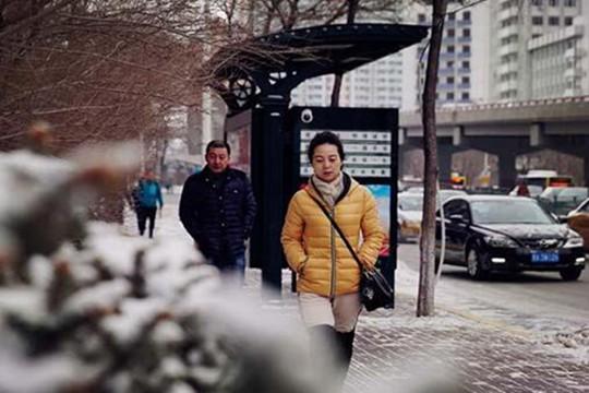 今年强度最大!黑龙江43个县市迎明显降雪