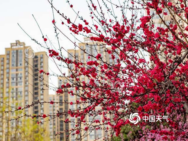 【头条练习】北方气温节节高升 今日贵州广西强对流概率最高