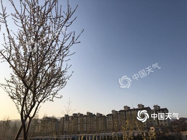 今日北京风力强劲 周日半马开跑天气利于比赛