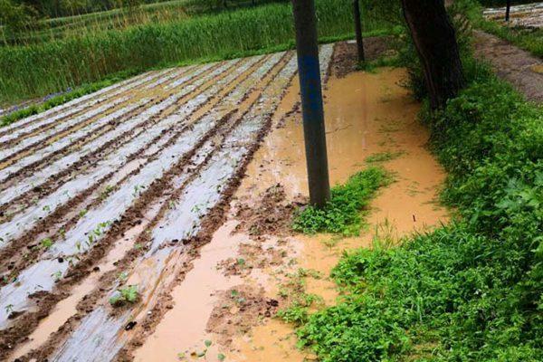 西北雨減弱 周四起全國迎三天降水間歇期