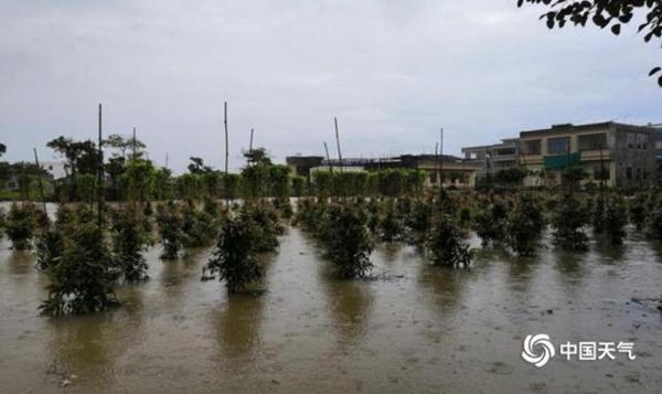 广东今起3天有大范围强降雨 雨水持续到月底