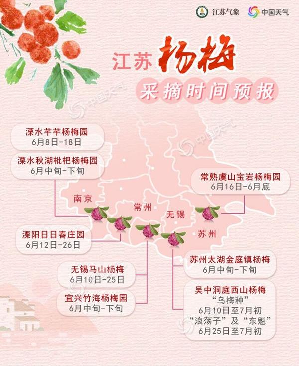 初夏杨梅人间至味  江苏杨梅采摘时间预报