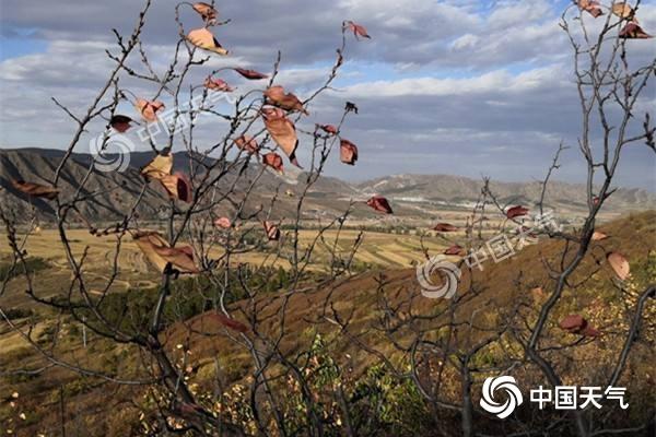 冷空气明起发力 内蒙古中东部局地降温超10℃