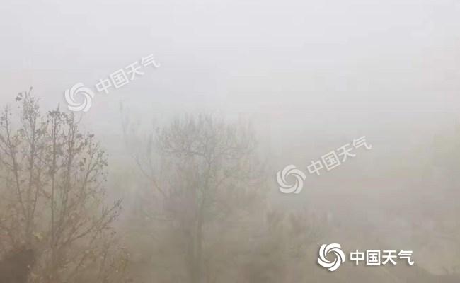 大雾红色预警!山东多地今天有强浓雾 明天冷空气来清场