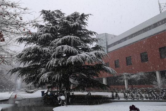 暴雪寒潮双预警齐发!河北局地有暴雪降温超10℃