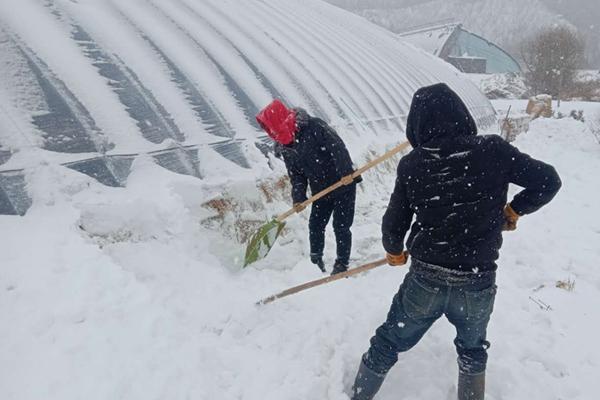 東北仍有強降雪 江南華南局地降溫超10℃
