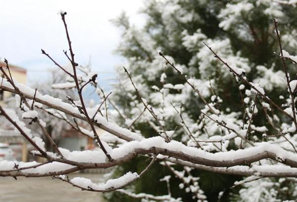 南方阴雨持续在线 全国大部气温回升