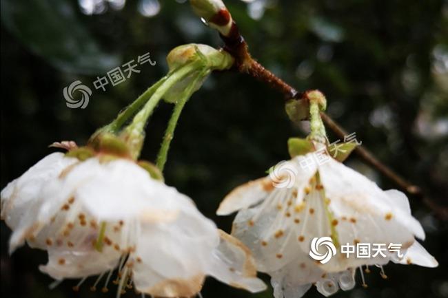 http://www.cyxjsd.icu/hunanfangchan/109184.html