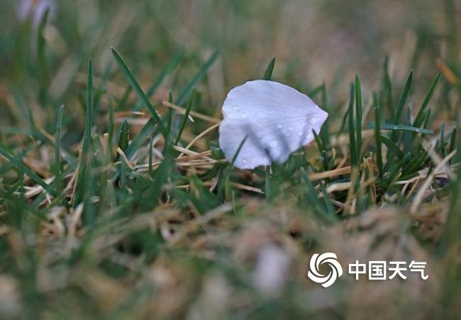 http://i.weather.com.cn/images/cn/news/2020/03/27/1585317184621060716.jpg
