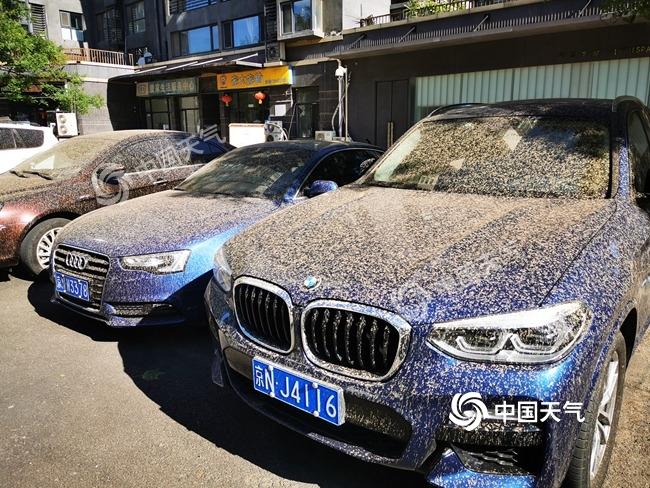 北京河北昨夜下泥雨 未来三天可以安排洗车啦
