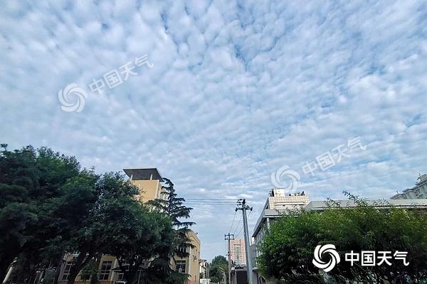微信图片_20200705065555.jpg