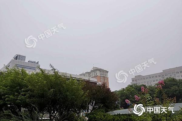 微信图片_20200711065201.jpg