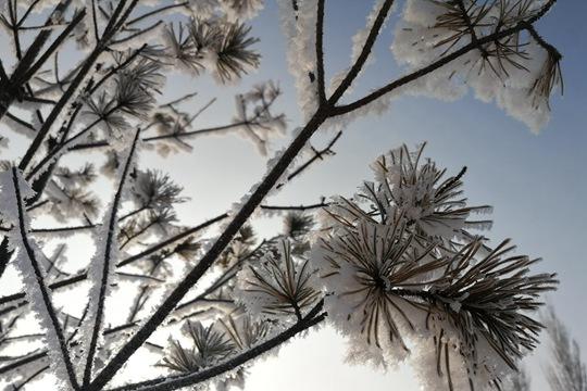 冷空气补货!中东部多地气温再创新低 南方阴雨月底消退