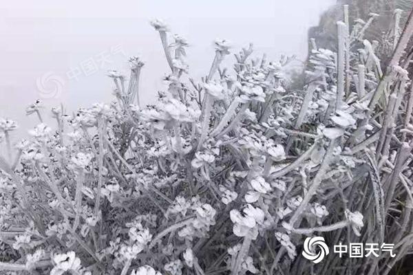 冷空气影响北方迎降温 西南东部多阴雨