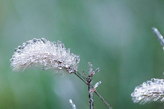 南方濕冷周日起緩解 北方波動升溫