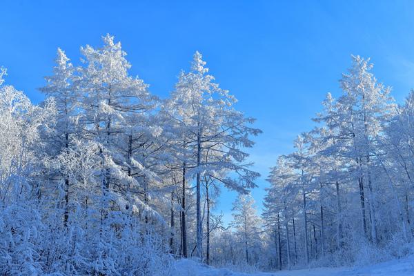 南方气温短暂冲高 新一轮寒潮天气来袭