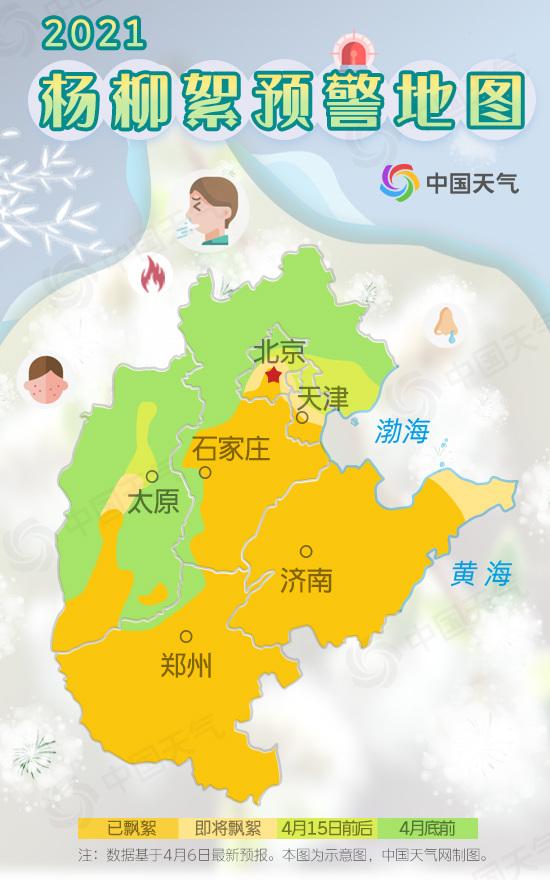 """小心糊一脸!华北杨柳絮即将进入高发期 北京城区初见""""雪"""""""