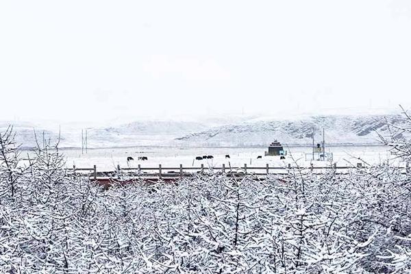 周末江南等地雨势强 北方现雨雪降温