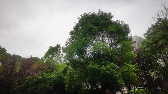 南方雨势减弱 北方多地气温创今年来新高