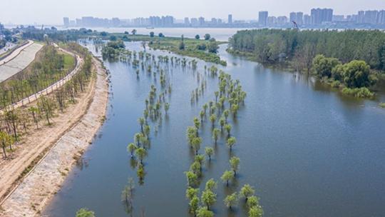 江南華南雨勢猛烈 周末多地晴熱天氣增多
