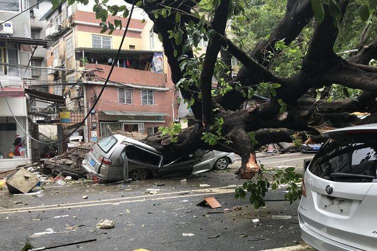 一组图见证台风破坏力