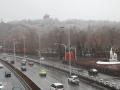 下雪了!新疆烏魯木齊出現降雪 地面樹木皆可見白
