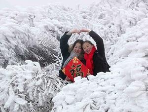 重庆黔江现雾凇美景 如梦如幻