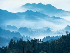 湖南新化紫鹊界现云海如仙境