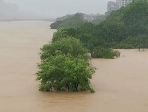 一组图告诉你南方降雨有多强:出门靠船