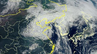 """卫星之眼看台风 """"利奇马""""和""""罗莎"""""""