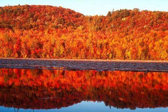 國慶長假出游 這些旅行地秋景美得剛剛好